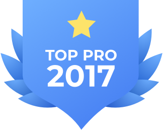 Top_pro_2017.png