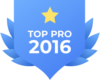 Top_pro_2016.png